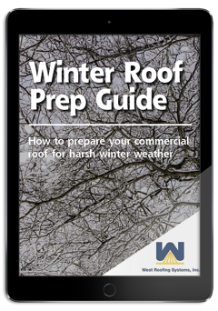 Winter Guide on iPad.png